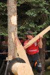 b_150_150_16777215_00_images_stories_stihl_zala_timber2015.JPG